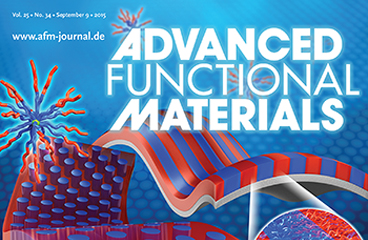 Prof. Jin Kon Kim Develops Self-neutralized Vertically Oriented Lamellar and Cylindrical Nanodomains