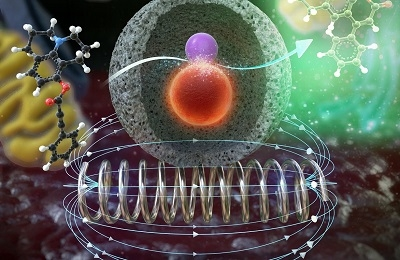 Nanocatalysts that Remotely Control Chemical Reactions Inside Living Cells