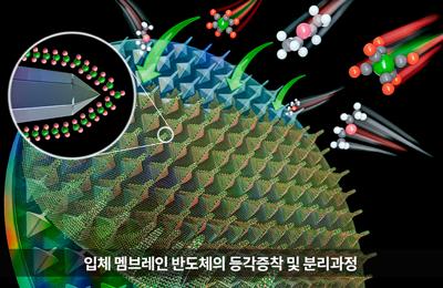 신소재 조문호 교수팀, 원자 두께 '멤브레인 반도체' 세계 최초로 3차원 구현